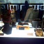 Bruce Quinn exhibits