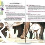 T&L Global Vision Award article