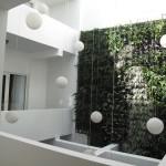 Tantalo Hotel Green wall