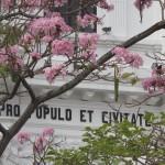 Casco Viejo Earth Day 2
