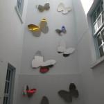 abundance of butterflies Casco Viejo