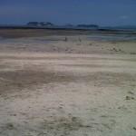 Playa Casco Viejo1