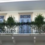 Casco Viejo with Plants