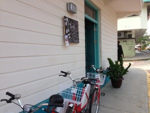 bicicletas Flor de Lirio