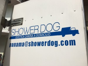 Shower dog Casco