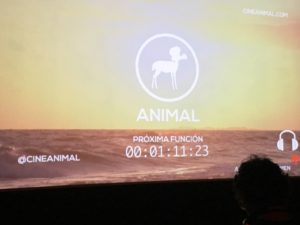 Funcion Cine Animal
